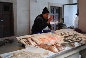 Molfetta - il mercato di Pesce