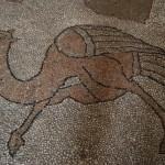 Otranto - la Cattedrale - Mosaico Pavimentale